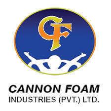 Cannon Foam